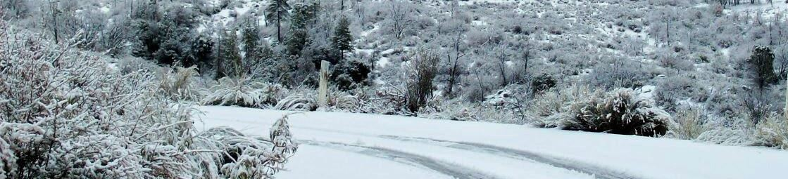 South Ogden Snow Removal Services