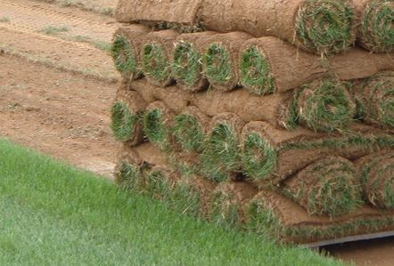 Sod Laying Services in Northern Utah